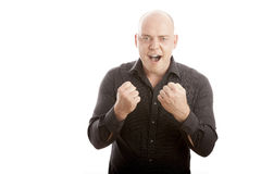 Bald man win and scream arms in the air Stock Images
