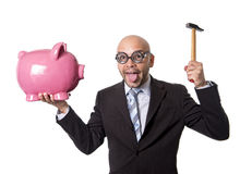 Bald nerdy businessman with geek glasses holding pink piggybank on his hand ready to break piggy bank with hammer Royalty Free Stock Image