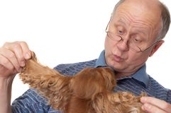 Bald senior man with dog. Emotional portraits series. Isolated on white stock image