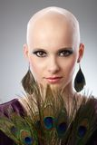Bald woman with peacock plumes. Portrait of beautiful hairless woman using peacock plumes as accessory Stock Image
