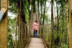 Baldachimu spaceru sposób Fotografia Royalty Free