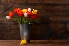 Balde de prata das tulipas imagens de stock