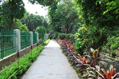 Baldha庭院是其中一个最旧的植物园在孟加拉国 庭院丰富与罕见的植物种类收集从 免版税图库摄影