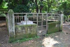 Baldha庭院是其中一个最旧的植物园在孟加拉国 庭院丰富与罕见的植物种类收集从 图库摄影