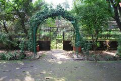 Baldha庭院是其中一个最旧的植物园在孟加拉国 庭院丰富与罕见的植物种类收集从 免版税库存照片
