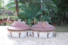 Baldha庭院是其中一个最旧的植物园在孟加拉国 庭院丰富与罕见的植物种类收集从 免版税库存图片