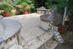 Baldha-Garten ist einer der ältesten botanischen Gärten in Bangladesch Der Garten wird mit den Spezies der seltenen Pflanze anger stockfotos