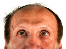 Balding mail looking up. Very beautiful isolated photo stock photo