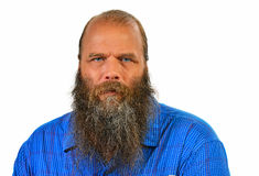 Balding man with long beard isolated Stock Photography