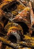 Baldosas cerámicas viejas Fotos de archivo libres de regalías