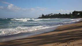 Baldwin Beach Park. View from Baldwin Beach Park - Maui, Hawaii stock footage