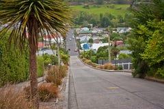 Baldwin gata i Dunedin som världarna mest steepest gata, Nya Zeeland royaltyfria foton