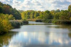 Baldwin Lake i höst royaltyfri foto