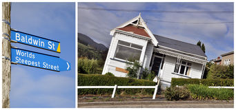 Baldwin street, Dunedin, New Zealand. Worlds steepest street, Baldwin street, Dunedin, New Zealand Stock Images