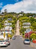 Baldwin Street Dunedin, Otago, Nya Zeeland arkivfoto