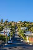 Baldwin Street, som lokaliseras i Dunedin, Nya Zeeland är den mest steepest gatan för världen i världen royaltyfri foto