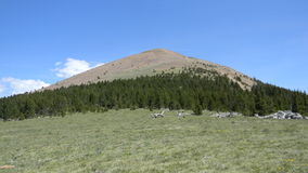 Baldy berg Royaltyfri Bild