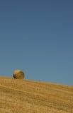 bale одинокий Стоковая Фотография RF