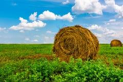 Bale сторновки Стоковые Изображения
