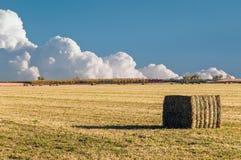 Bale of Alfalfa Straw Royalty Free Stock Photos