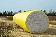 Bale of Cotton Royalty Free Stock Photography