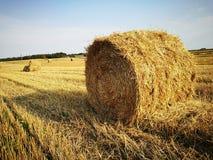 Bale Stock Photo
