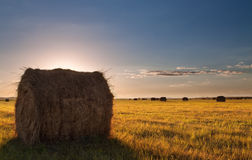 Bale field landscape Royalty Free Stock Photography