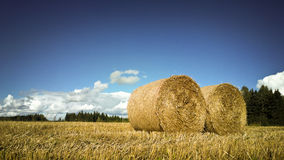 Bale of hale Royalty Free Stock Image