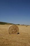 Bale of Hay. A Field of Hay Stock Image