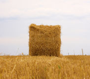 Bale of hay. Against a background of the sky royalty free stock photography