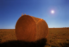 A Bale Of Hay Stock Photography