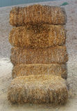 Bale of hay 2. Six of bales of hay Royalty Free Stock Image