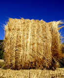 Bale of hay Royalty Free Stock Images