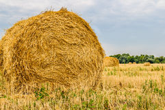 A bale of hay Royalty Free Stock Photos