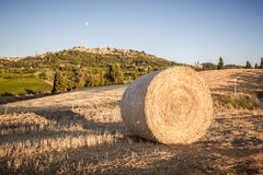 Bale of hay, in the background Montepulciano Royalty Free Stock Photo
