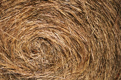 Bale of hay - close up Stock Photos