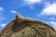 Bale of hay Stock Photos
