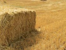 A Bale of hay Stock Images