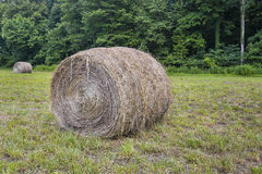 Bale of Hay Stock Image