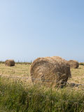 Bale of hay on cultivated field. Blue sky in the background Royalty Free Stock Photography