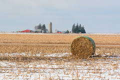 Bale of Hay Royalty Free Stock Photo