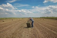 Bale of hay in field and farmer. Farmer and packed bale of hay in field, early summer Royalty Free Stock Photos