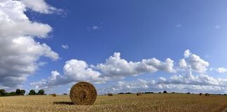 Bale of Hay in Field Panorama Royalty Free Stock Photos