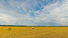 Bale of hay in the field, time-lapse pan stock footage