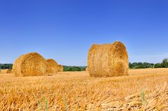 Bale of hay in a field Stock Image