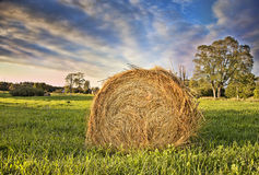 Bale of Hay. HDR Stock Image