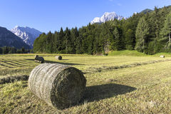 Bale of hay. Mountain background Stock Images