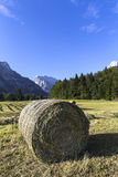 Bale of hay. Mountain background Stock Photography