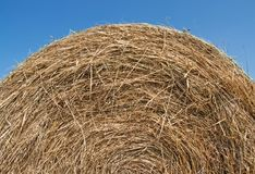Bale of hay over blue sky Royalty Free Stock Photo