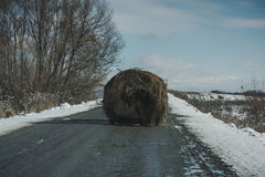 A bale of hay on priceme Royalty Free Stock Photo